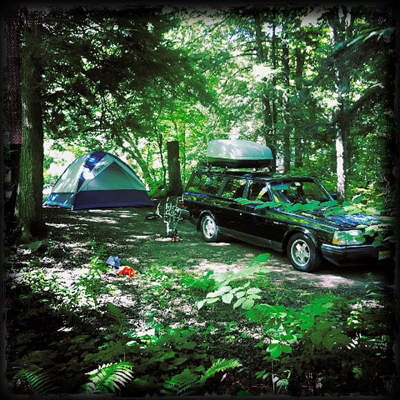 volvo-240-camping-woods