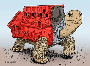 redblock-tortoise-300w